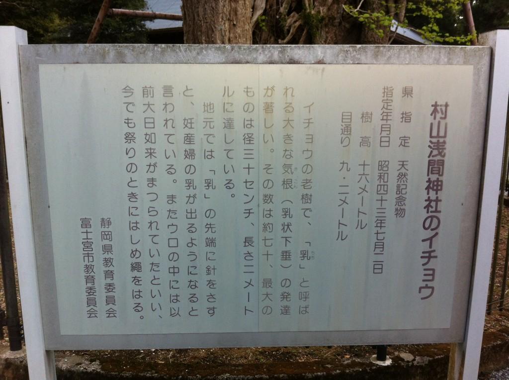 村山浅間神社のイチョウ看板