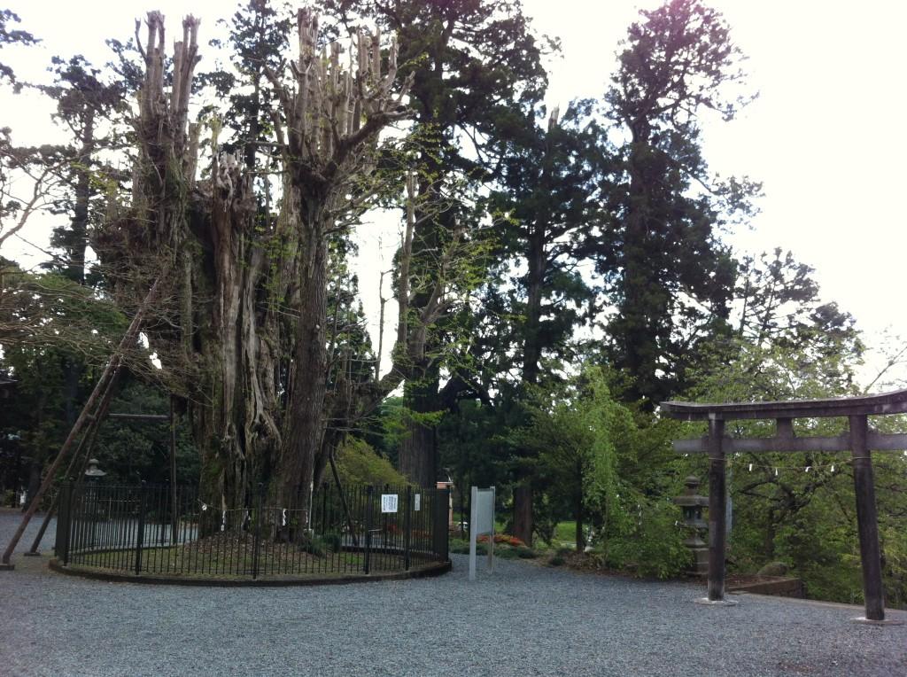 村山浅間神社6