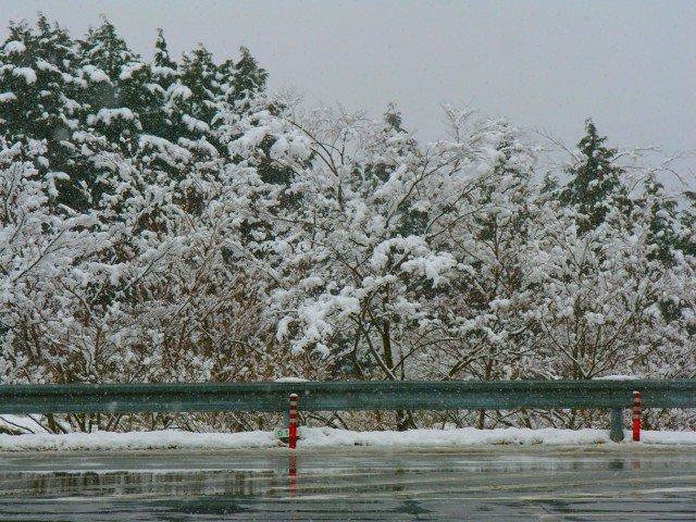 富士山周辺の雪道