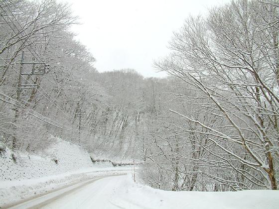 冬季の雪道